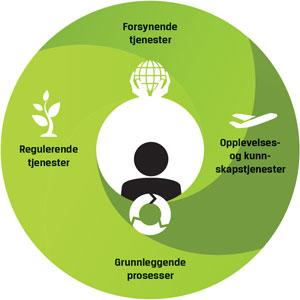 Økosystemer