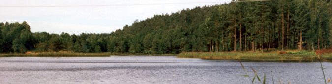 Fiskevann