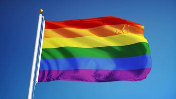 Homoflagg3