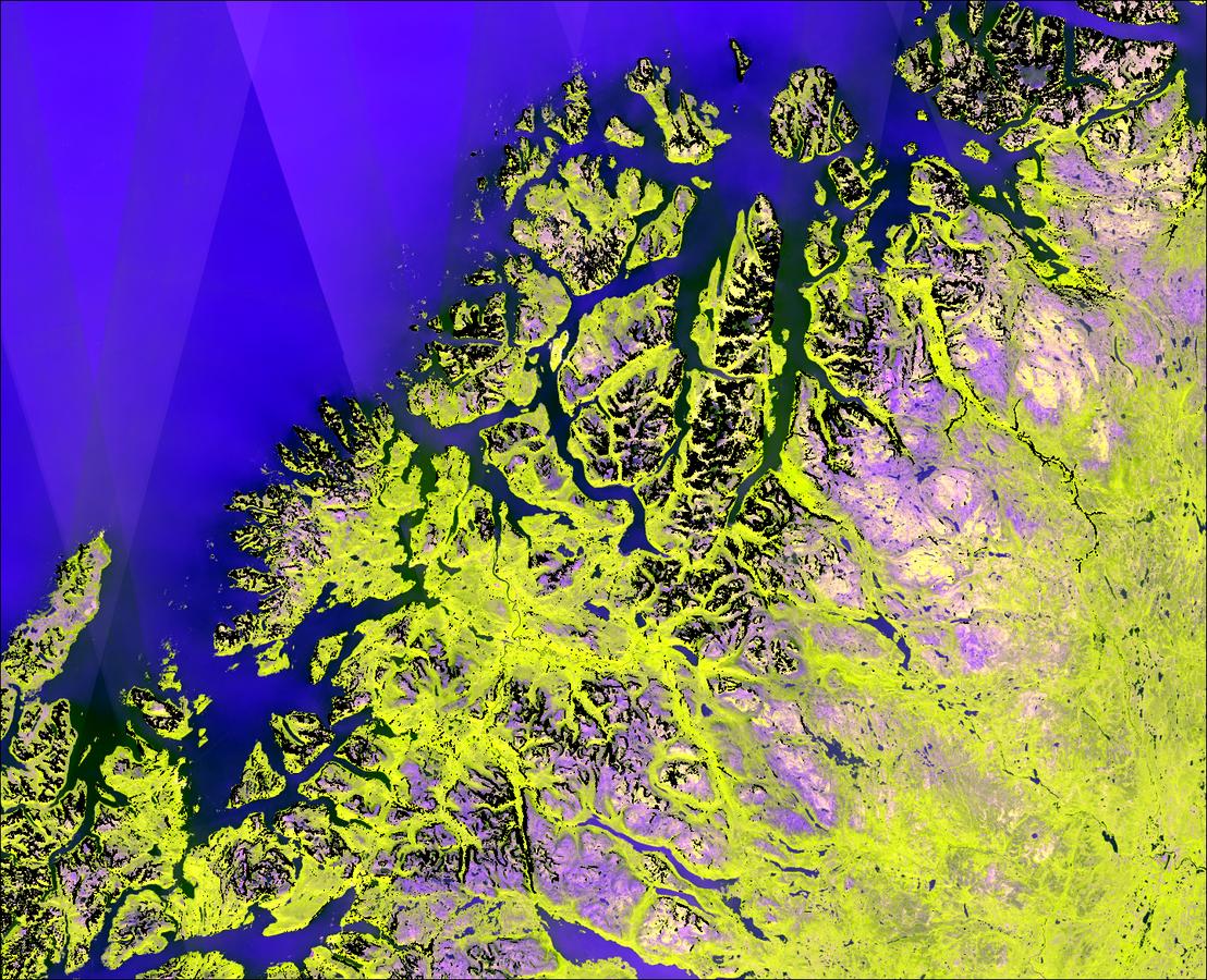 Sentinel-1 CSAR mosaic 2015-2017_06-09