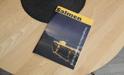 888_salmen_ingress