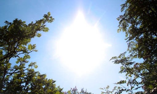 varmegrader_sol-3