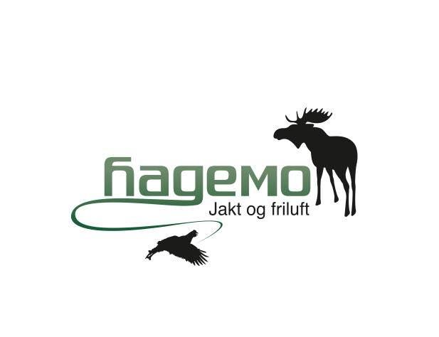 Sponsor Hagemo