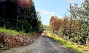 Oppgradert fjellvei til hit