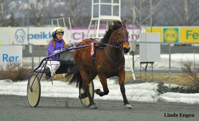 Klæbakkens Sonja og Silje Tjørnhom
