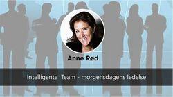 Ingressbilde intelligente team