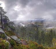 Fra toppen av Tonekollen ser du store deler av den planlagte nasjonalparken. Foto: Vidar Svarttjernet.