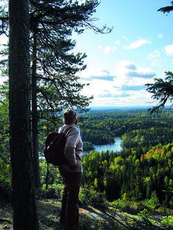 Sverre M. Fjelstad, som tenkte på nasjonalparken for mer enn 70 år siden, skuer utover Østmarka fra Tonekollen. Foto: Cathrine Søberg.