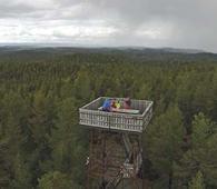 På turen kan du beundre utsikten fra Branntårnet utover Østmarka og området som er foreslått som nasjonalpark. Foto: Kristian Götz.