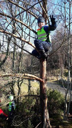 I treet