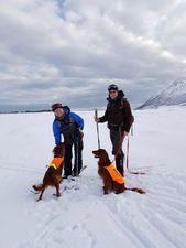 Ronny Jørgensen med G-Tjikkom av Miessevàrri og Tom Johansen med Norrlands Guidens Storeulv (Torres) på NM Vinter 2019 Andøya