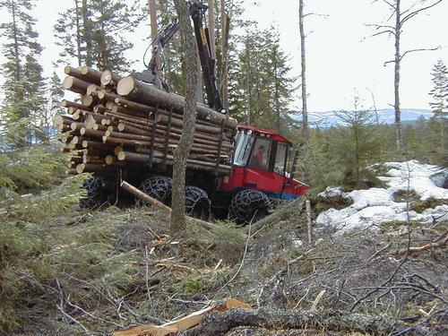 Tømmerdrift