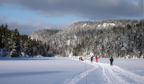 Oslomarka er klodens viktigste skiområde! Foto: Bjarne Røsjø.