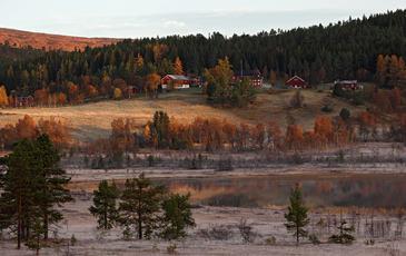 Foto: Steve Halsetrønning