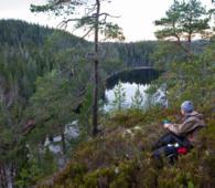 Naturreservatene i Østmarka skal beholde sin vernestatus, ifølge statsråd Elvestuens avklaringer. Her fra Ørnehøgda ved Midtre Kytetjern i Østmarka naturreservat. Foto: Espen Bratlie.