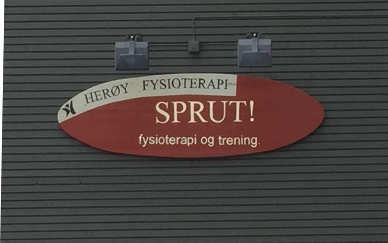 Logofysio
