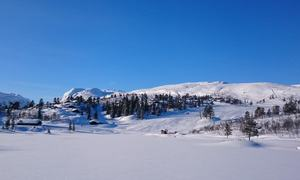 Alpinbakke på Hallbjønnsekken[1]