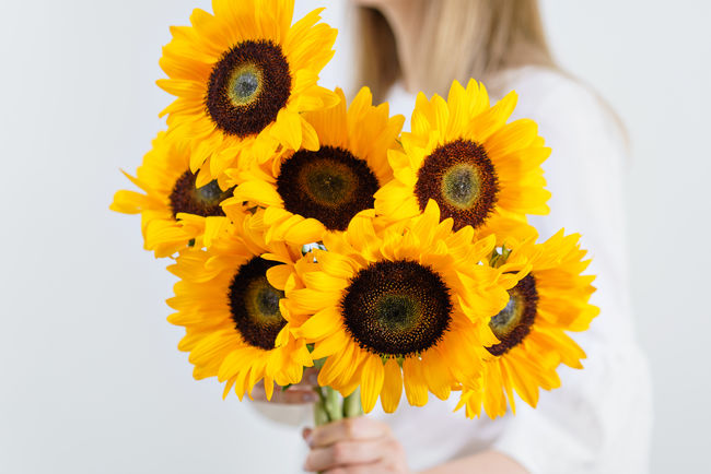 Bouquet of yellow sunflowers , flower in woman hand. Room morning. Colors of autumn and mood fall