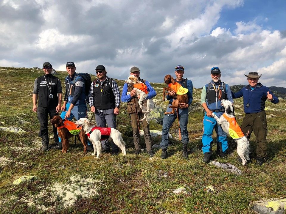 Unghund Grand Prix 2019