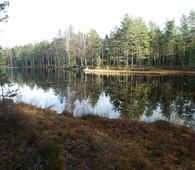 Høst ved vakre Smalvann. Foto: Lise Henriksen.