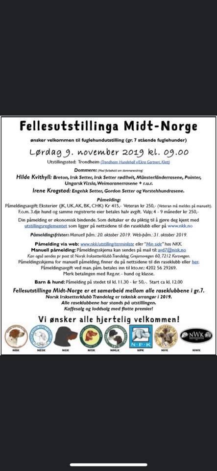 Midt-Norge Fellesutstillingen 2019.jpg