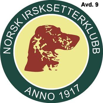 NISK Logo Avd 9