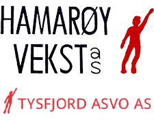 Hamarøy Vekst AS   Tysfjord ASVO