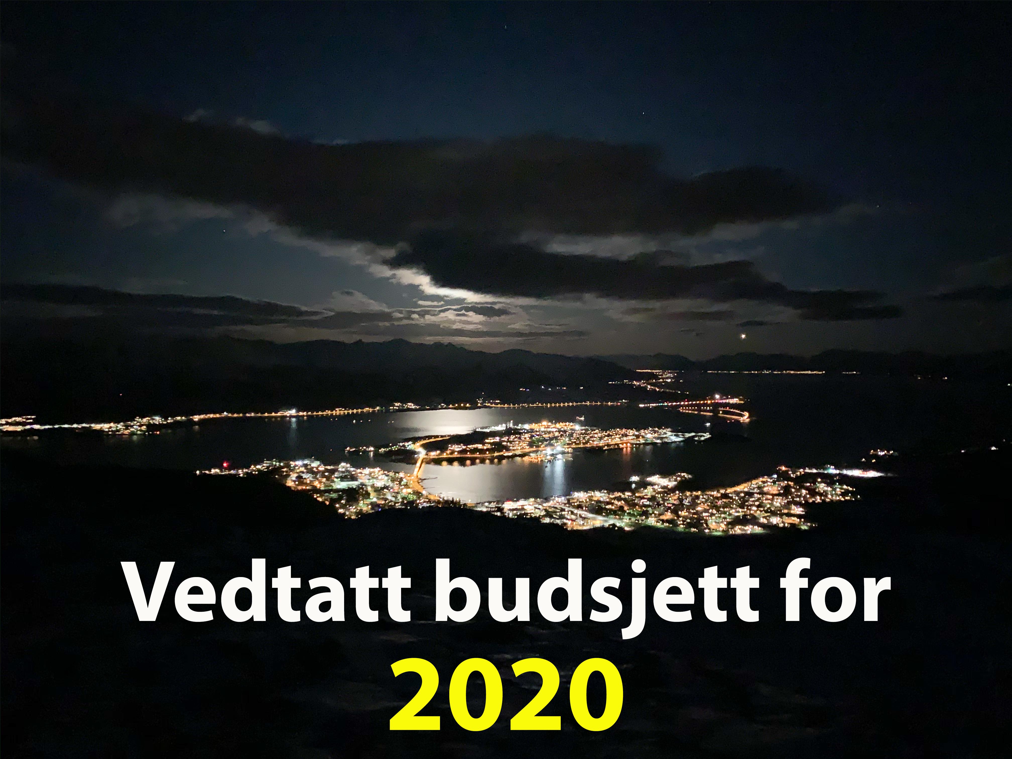vedtatt budsjett 2020