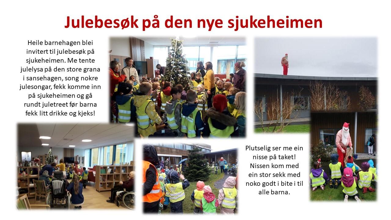 marihøno besøk sjukeheimen jul nisse