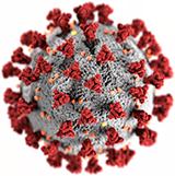 koronaviruset nettsted forside