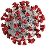 koronaviruset nettsted forside.png