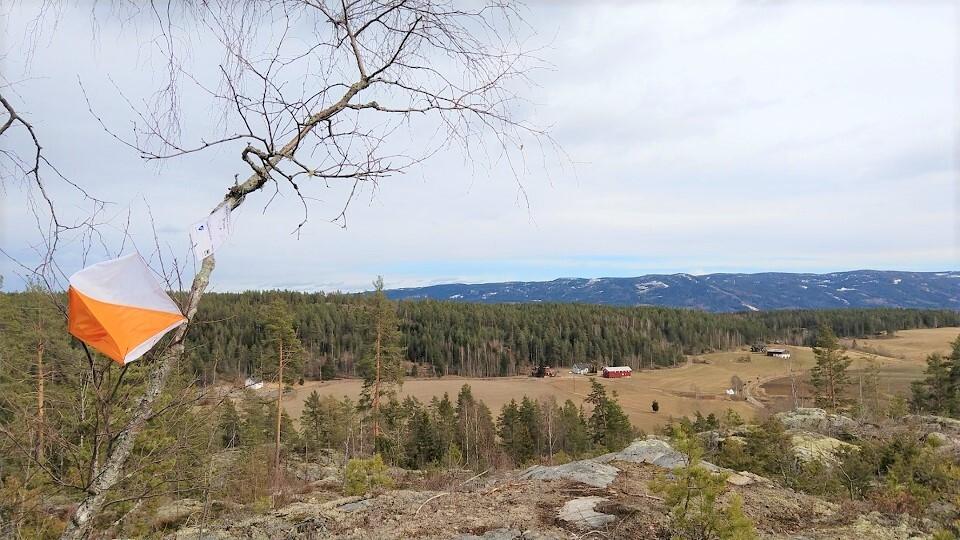 Utsikt over Tarmen og Hæhre med Krøderbanen