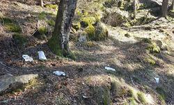 Slik så det ut ved Lutvann etter påske, med flagrende dopapir langs stier og rasteplasser. Foto: Helga Gunnarsdóttir.