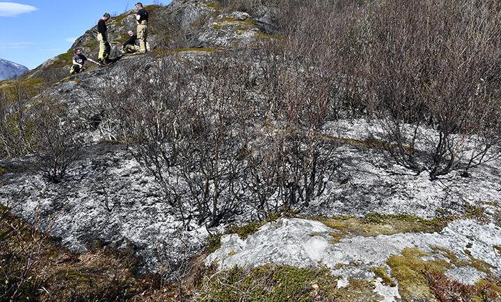LyngbrannMjøsundBIG1