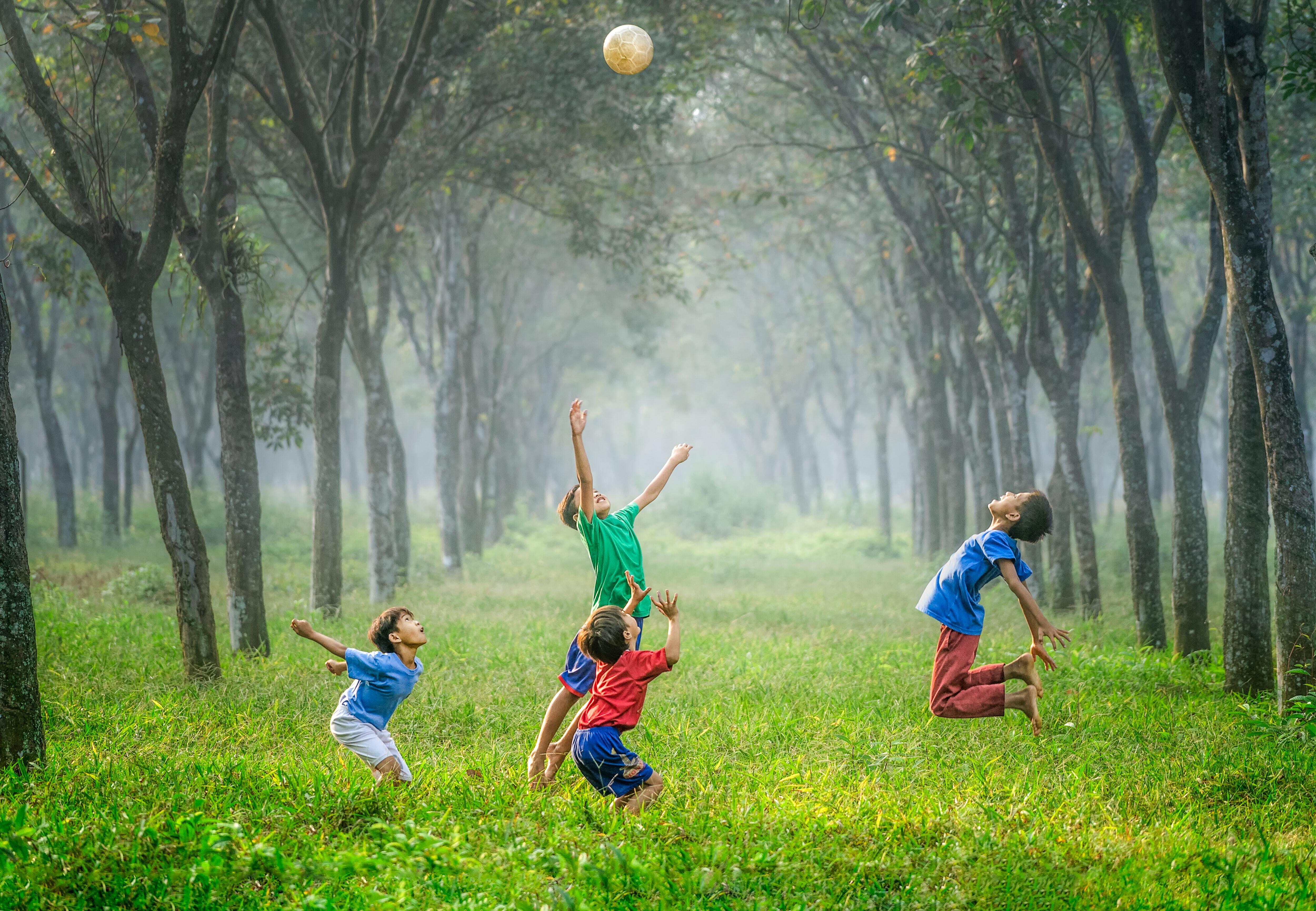 LP 2020_barn som leker med ball i skogsalleen.jpg