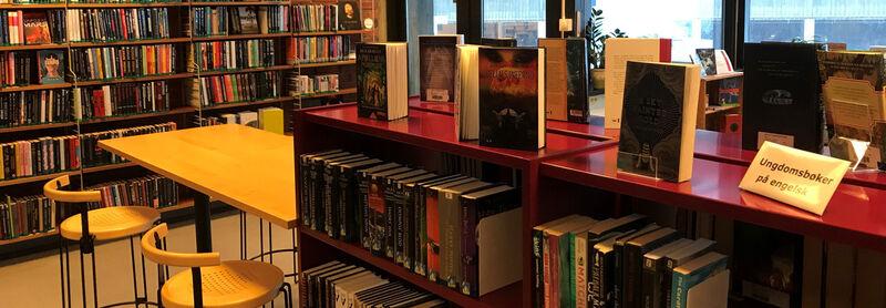 bøker i bibliotek