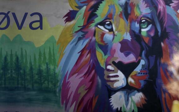Bilde av en person foran en sto, fargerik grafitti av en løve
