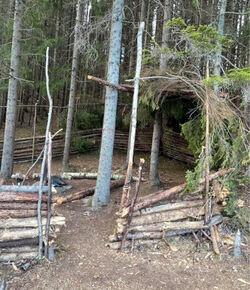 Denne store leirplassen, lagd av nedhogde trær, er et av de groveste tilfellene i dokumentet. Foto: RKL.