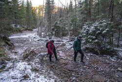 De to ØV-representantene tråkker innover på den delvis frosne traseen mot hogstfeltet. Foto: Erlend Berge / Vårt Land.