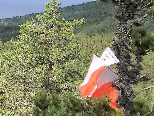 Postflagg