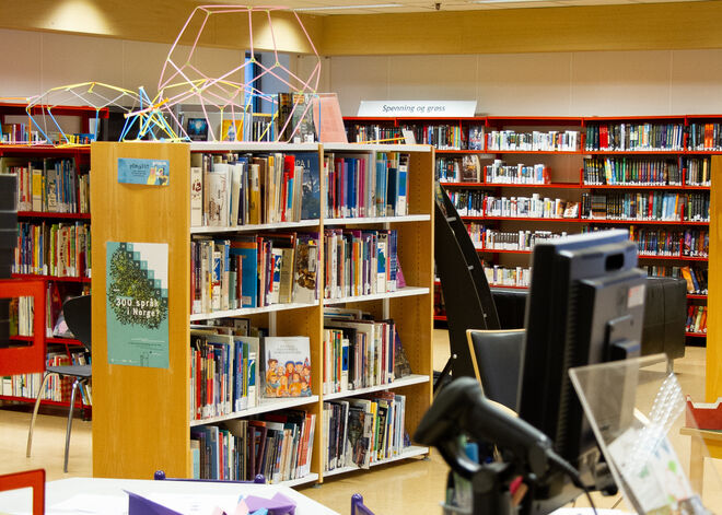Borhaug bibliotek[1]