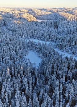 Tretjernhøla sett fra lufta en vintermorgen. Foto: Kjell Erik Sandberg.