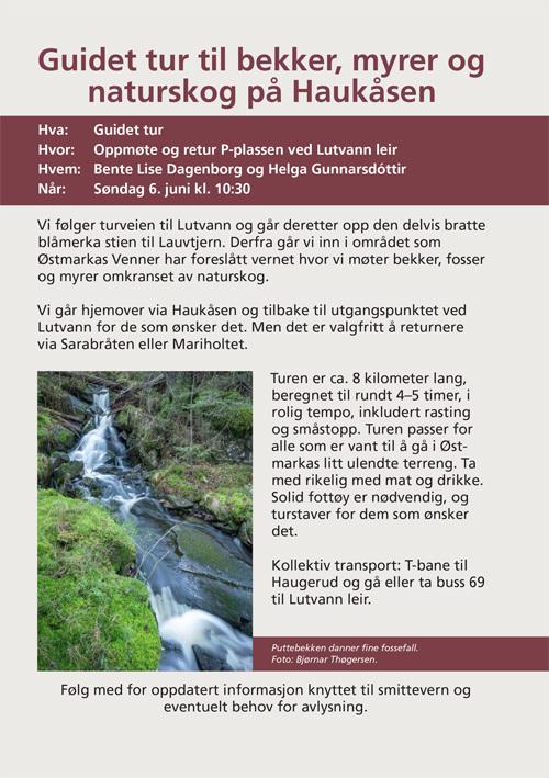Guidet tur Haukåsen.jpg