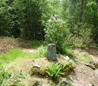 Steinen på Solåsen-juni 2014