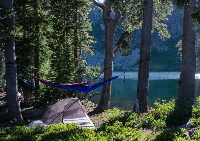 Fri camping