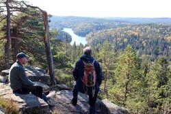 På dette bildet var furua på Tonekollen fortsatt intakt. Foto: Håkon Breivik Myhr.
