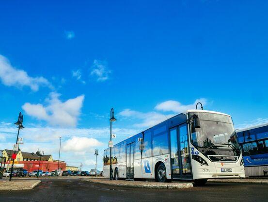 Buss hd