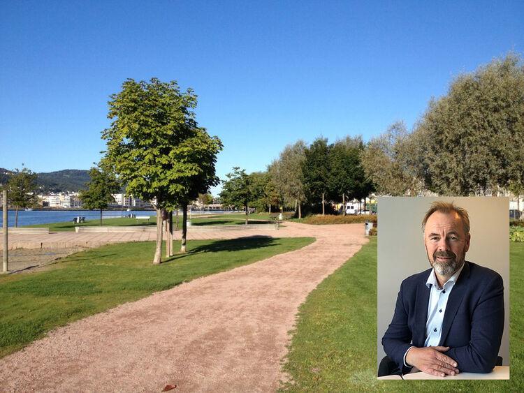 Administrerende direktør Petter Vistnes i Steen & Lund AS kom fra BetonmastHæhre, og hadde mye kunnskap om betong. I Steen & Lund har han fått lære om det grønne også, slik som på dette bildet fra Bragernes Strand.