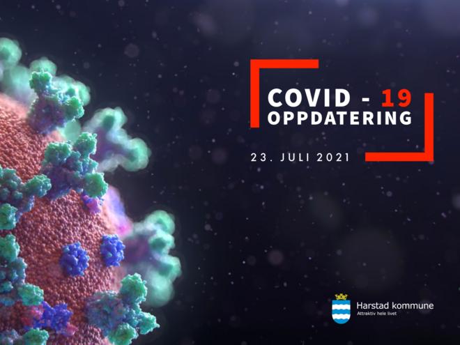 COVID-19 smitte generell (Stor)