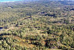 Bildet er tatt mot sørøst. Vannet i bakgrunnen er Bikkjetjern, og vannet til venstre er søndre Helletjern. Foto: Østmarkas Venner.